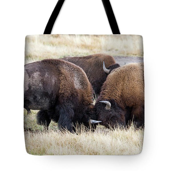 Bison Fight Tote Bag