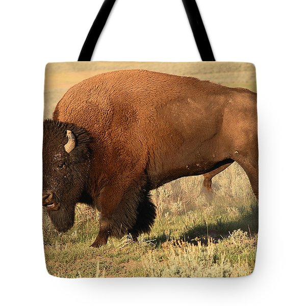 Tote Bag featuring the photograph Bison Huffing And Puffing For Herd by Max Allen