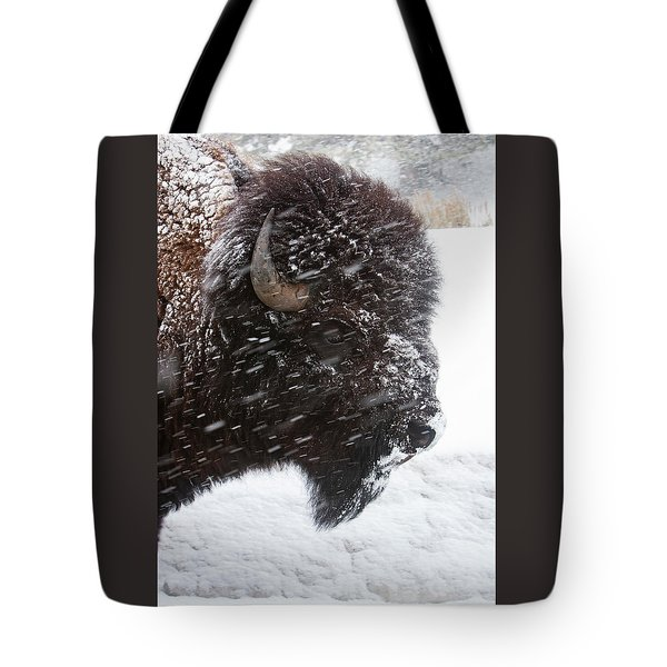 Bison In Snow Tote Bag