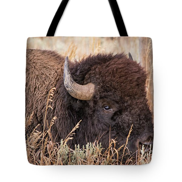 Tote Bag featuring the photograph Bison In The Grass by Mary Hone