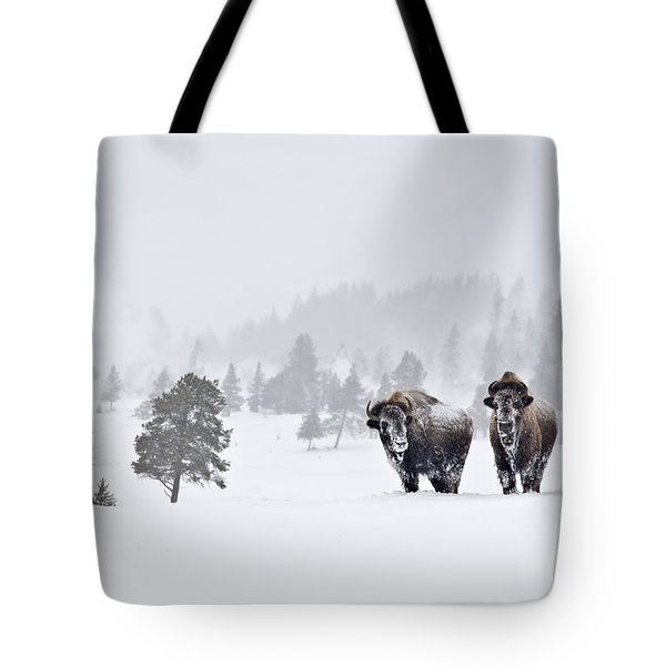 Bison In The Snow Tote Bag by Gary Lengyel