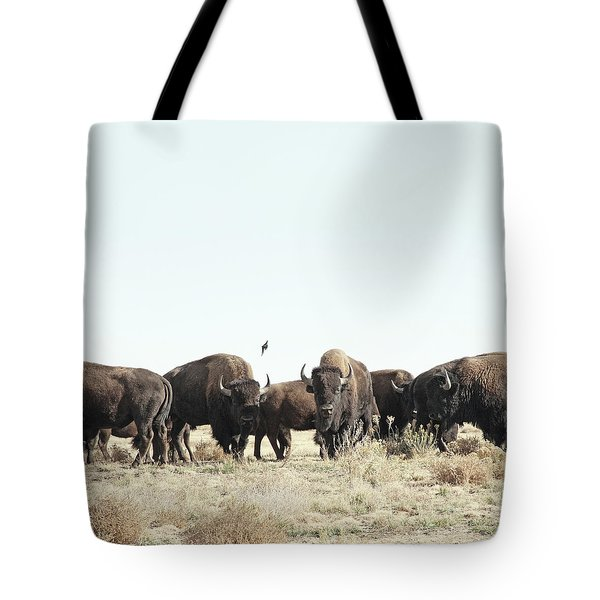 Bison Tote Bag by Lauren Mancke