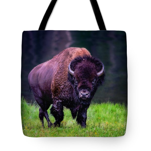 Bison Of Yellowstone Tote Bag