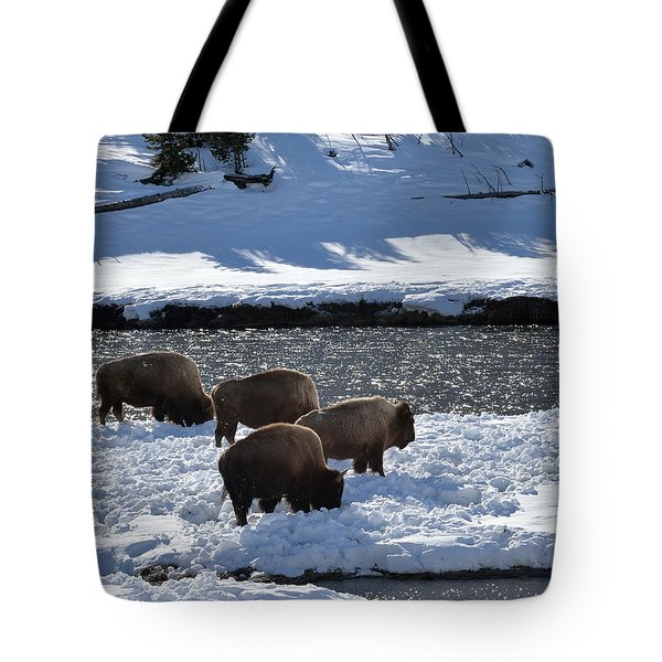 Tote Bag featuring the photograph Bison On River Strand by Kae Cheatham