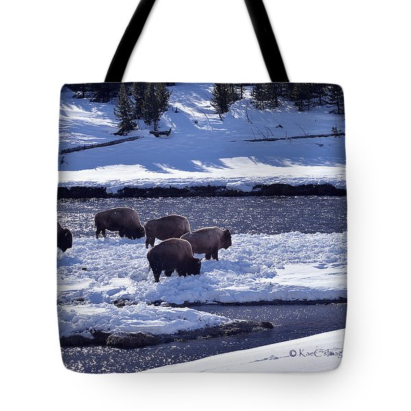 Tote Bag featuring the photograph Bison On River Strand Landscape by Kae Cheatham