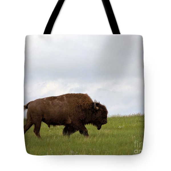 Bison On The American Prairie Tote Bag