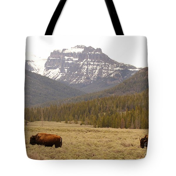 Tote Bag featuring the photograph Bison Pair Beneath Mountains by Max Allen