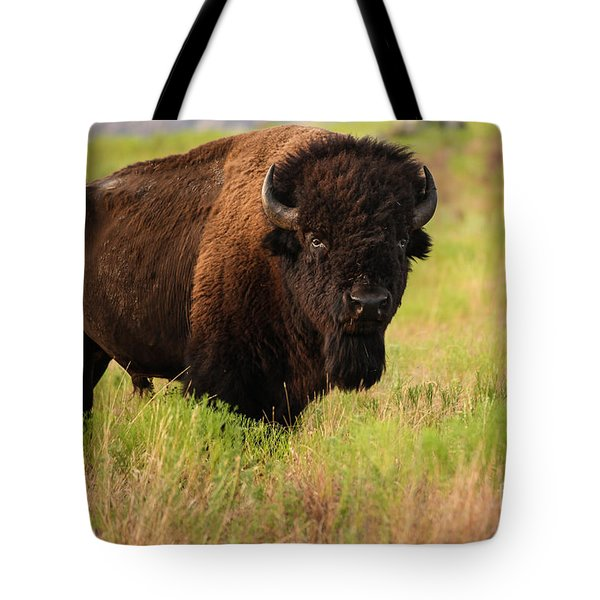Bison Prime Tote Bag