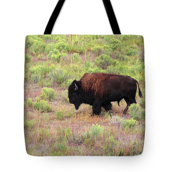 Bison1 Tote Bag