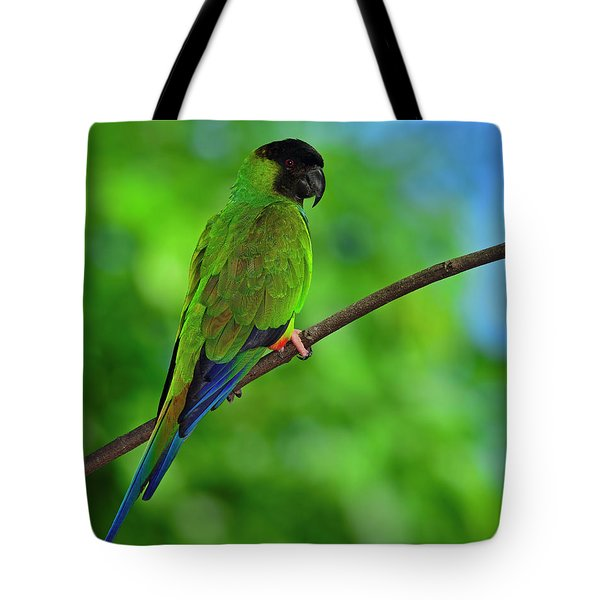 Tote Bag featuring the photograph Black And Blue by Tony Beck
