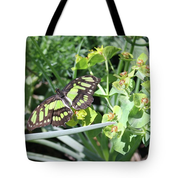 Black And Green Butterfly Tote Bag