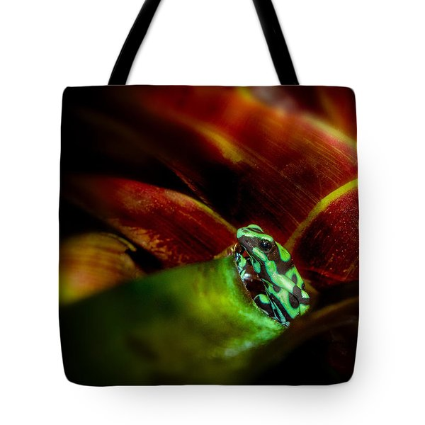 Tote Bag featuring the photograph Black And Green Dart Frog In The Red Bromeliad by Rikk Flohr