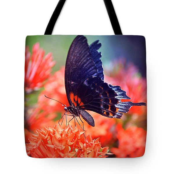 Black And Orange Butterfly Tote Bag