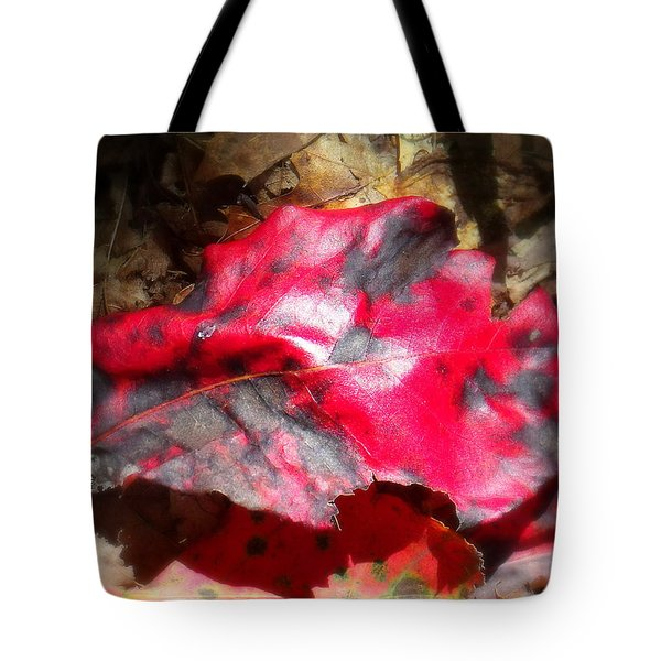 Black And Red Tote Bag by Ed Smith