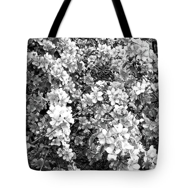 Tote Bag featuring the photograph Black And White Beautiful Blossoms by Aimee L Maher Photography and Art Visit ALMGallerydotcom