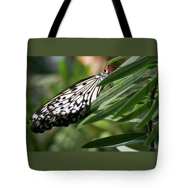 Black And White Butterfly -  Tote Bag