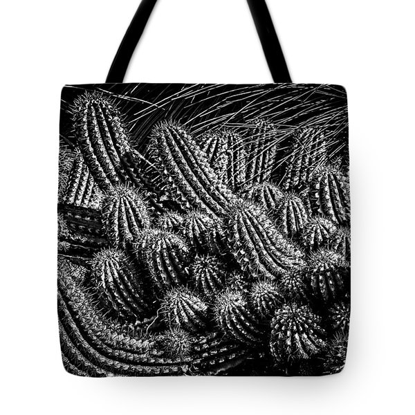 Tote Bag featuring the photograph Black And White Cactus by Harry Spitz