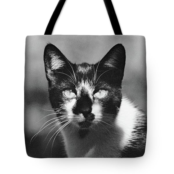 Black And White Cat Close Up Tote Bag