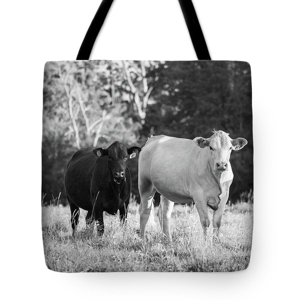 Black And White Cows Tote Bag
