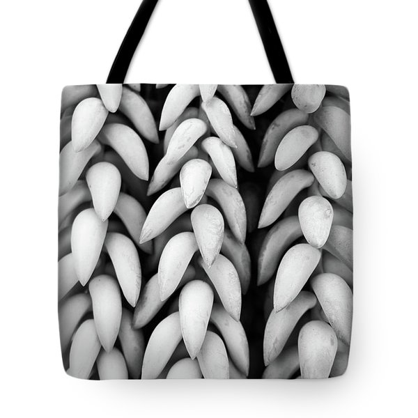 Black And White Hanging Plant Detail. Tote Bag by Cesar Padilla