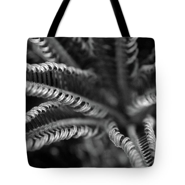 Black And White Palm Abstract 3624 Bw_2 Tote Bag