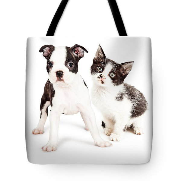 Black And White Puppy And Kitten Together Tote Bag