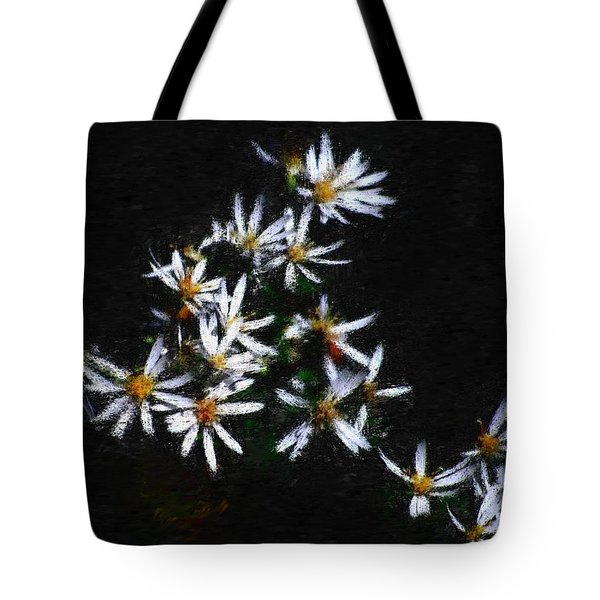 Black And White Study II Tote Bag by David Lane