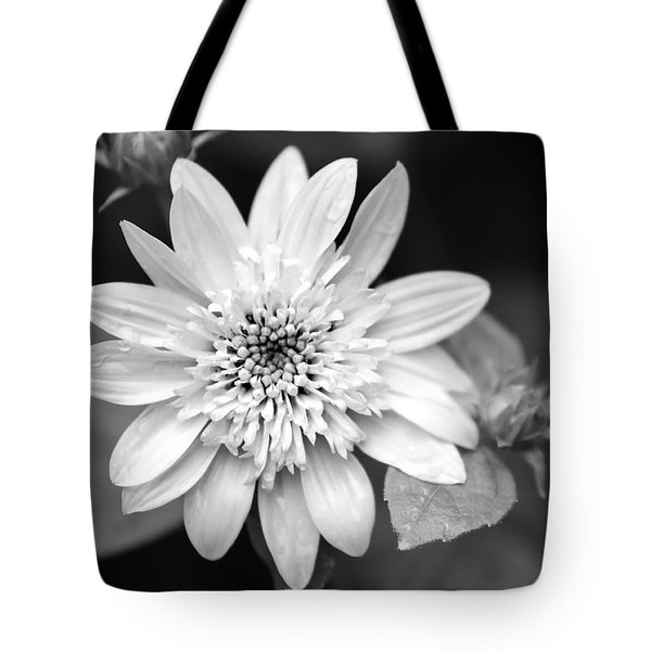 Tote Bag featuring the photograph Black And White Sunrise Coreopsis by Christina Rollo
