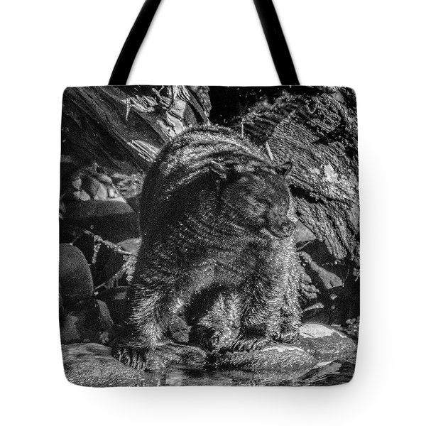 Black Bear Creekside Tote Bag