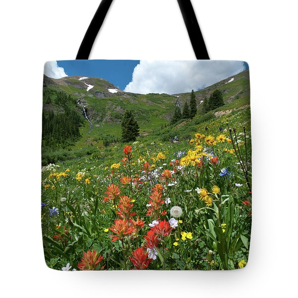 Black Bear Pass Landscape Tote Bag