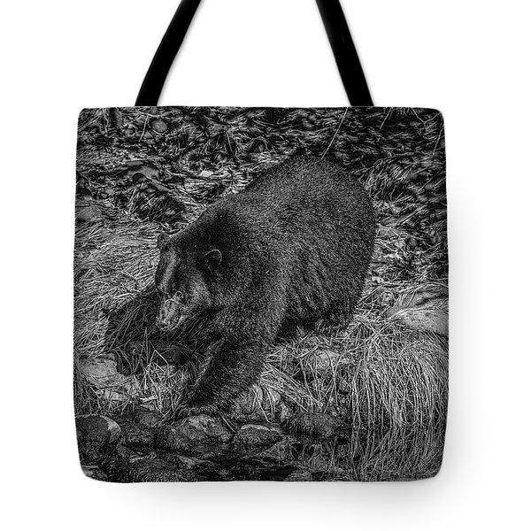 Black Bear Salmon Seeker Tote Bag
