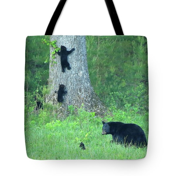 Tote Bag featuring the photograph Black Bear Sow And Four Cubs by Coby Cooper