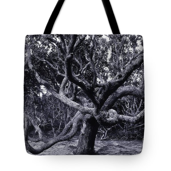 Black Beard Tree Tote Bag