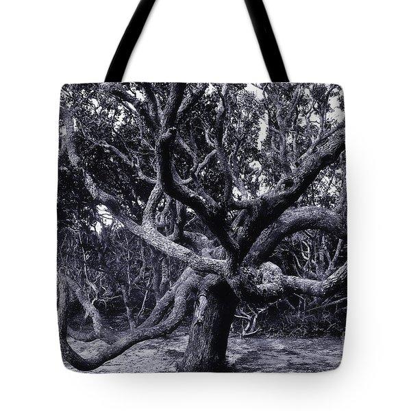 Black Beard Tree Tote Bag