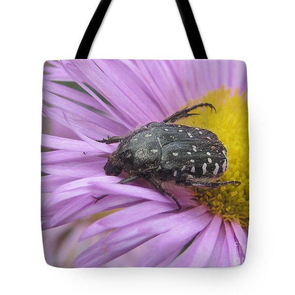 Tote Bag featuring the photograph Black Beetle by Irina Hays