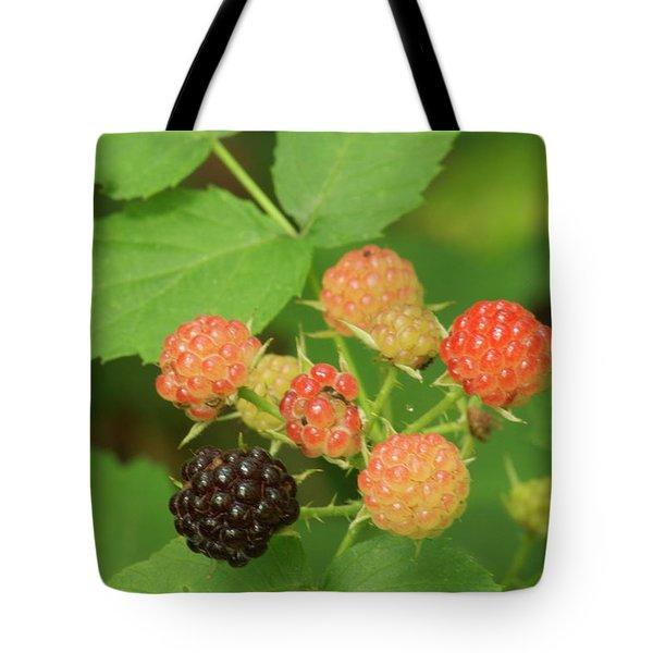 Black Berries Tote Bag by Michael Peychich
