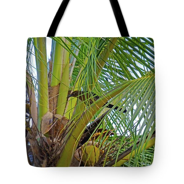 Tote Bag featuring the photograph Black Bird In Tree by Francesca Mackenney