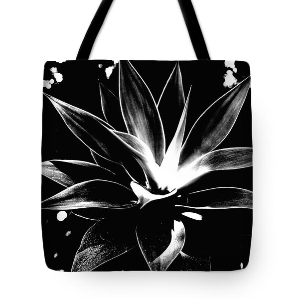 Tote Bag featuring the photograph Black Cactus  by Rebecca Harman