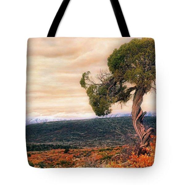 Black Canyon Juniper - Colorado - Autumn Tote Bag by Jason Politte