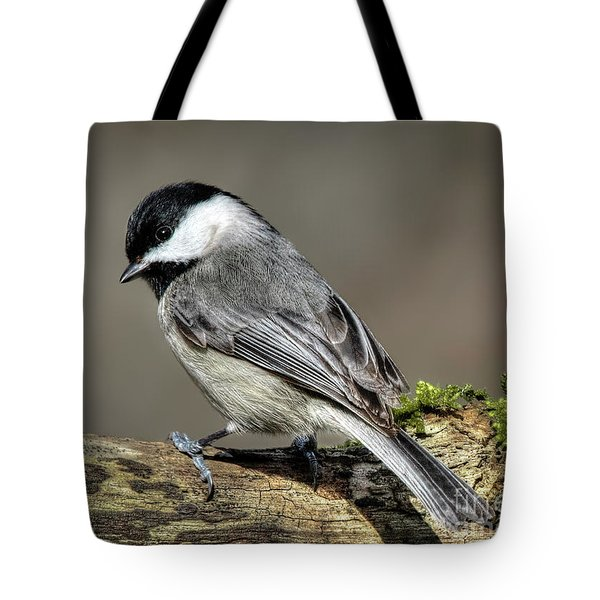Black-capped Chichadee Tote Bag