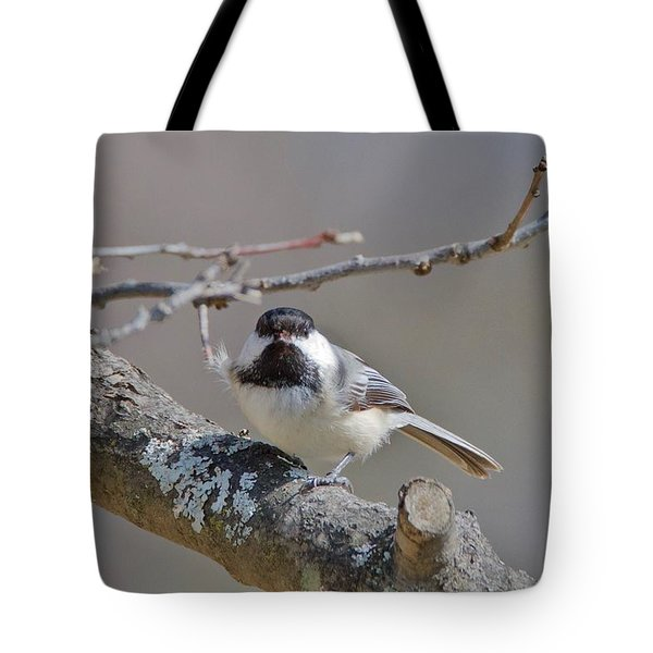 Tote Bag featuring the photograph Black Capped Chickadee 1109 by Michael Peychich
