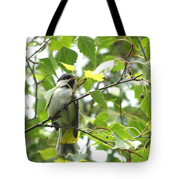 Tote Bag featuring the photograph Black Capped Chickadee  by Angie Rea
