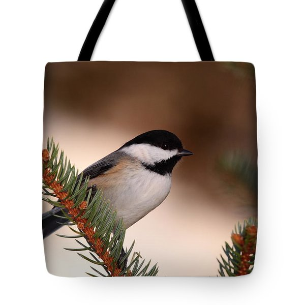 Black-capped Cickadee II Tote Bag
