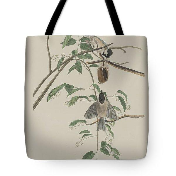 Black-capped Titmouse Tote Bag