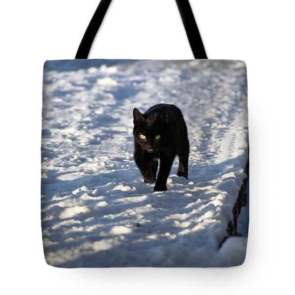 Black Cat In Snow Tote Bag