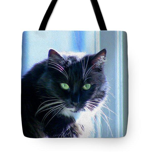 Black Cat In Sun Tote Bag