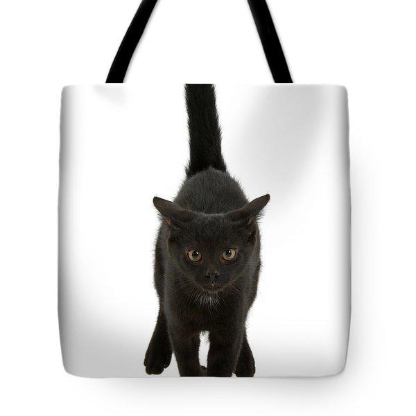 Black Cat On The Run Tote Bag