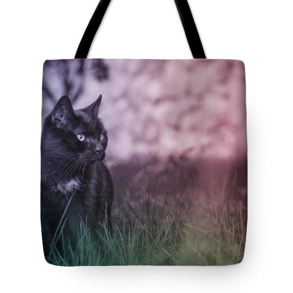 Black Cat Tote Bag by Silvia Bruno