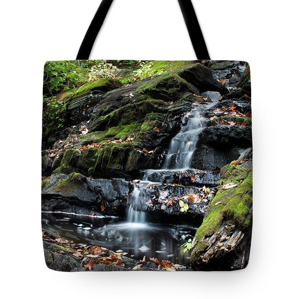 Black Creek Falls In Autumn, 2016 Tote Bag by Jeff Severson