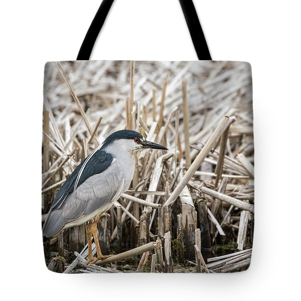 Black-crowned Night Heron 2017-1 Tote Bag